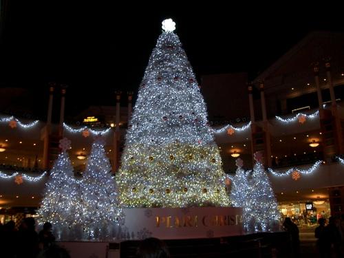2006 イクスピアリ クリスマス