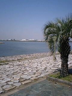 さらば、愛しの葛西臨海公園