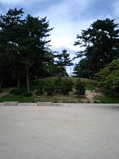 岡町の古墳群