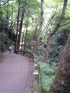 滝道 三景