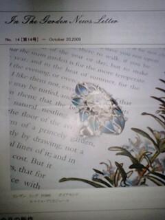 In The Garden ニュース 第14号