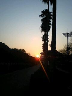 日は昇り、そして