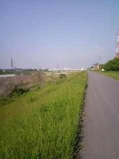 仁醒のスイスイサイクリング 「猪名川堤防」
