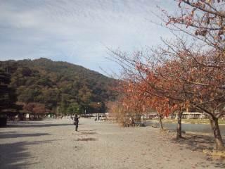 京都嵯峨野三景