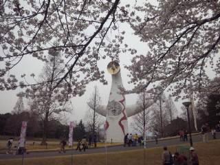 太陽の塔に桜 三景