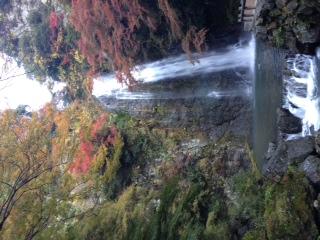 箕面大滝、水の効用